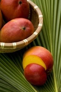 mango dijeta